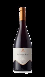 Pinot Nero Trentino Doc
